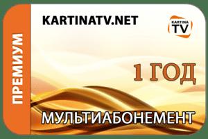 Абонемент Kartina TV на 1 год - Премиум